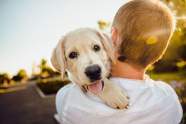 当你走出囚笼,幸福就会温柔的拥抱你